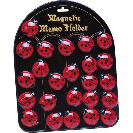 Tableau avec magnets coccinelles